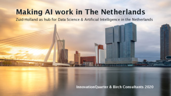 Making AI Work in the Netherlands